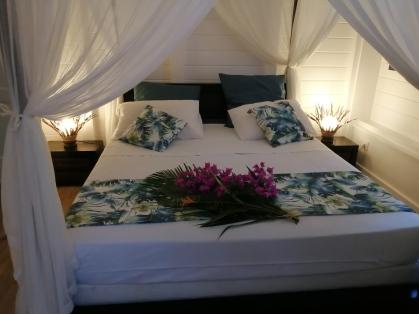 """Chambre """"Manguier"""" avec son grand lit double. Moustiquaire. Climatisation"""